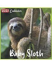 Baby Sloth 2021 Calendar: Official Baby Sloth Wall Calendar 2021, 18 Months