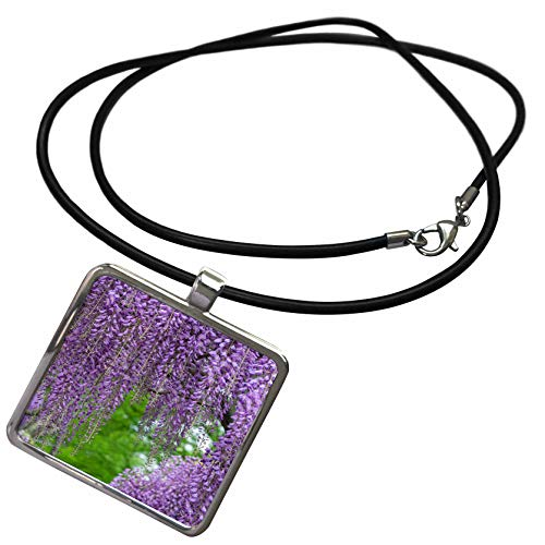 (3dRose Danita Delimont - Gardens - Japanese Wisteria. - Necklace with Rectangle Pendant (ncl_314999_1))