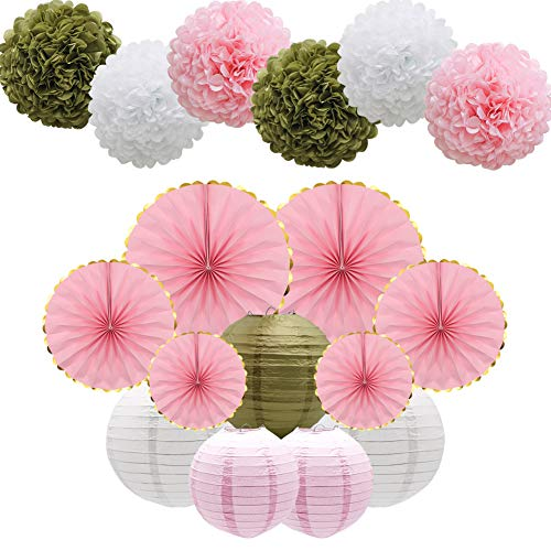 17pcs Party Decoration Supplies Set, Pink Tissue Paper Pom Poms Flowers Paper Lanterns Hanging Paper Fans for Birthday, Bridal, Baby Shower, Wedding, Graduation, -