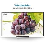 Rankie-Adattatore-DVI-su-HDMI-1080P-Pacco-da-2-Nero
