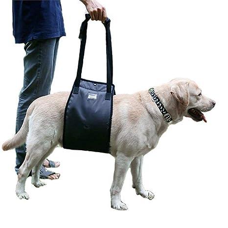 Arnés de apoyo para perro, arnés de elevación para perro con ...