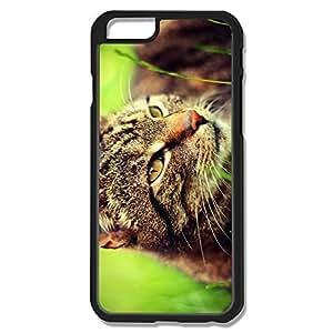 Ideal Cat Plastic Case For IPhone 6