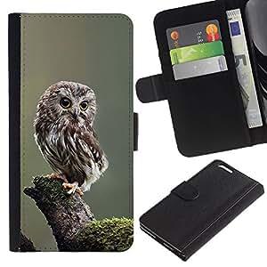 Caso Billetera de Cuero Titular de la tarjeta y la tarjeta de crédito de la bolsa Slot Carcasa Funda de Protección para Apple Iphone 6 PLUS 5.5 owl baby cute feathers blurry nature /