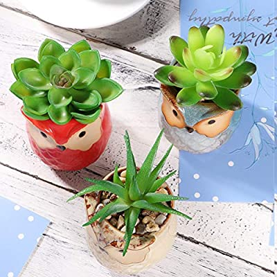 Yardwe 3PCS Simulation Succulents Potted Artificial Plants Artificial Succulent Plants for Home Decoration Office : Garden & Outdoor
