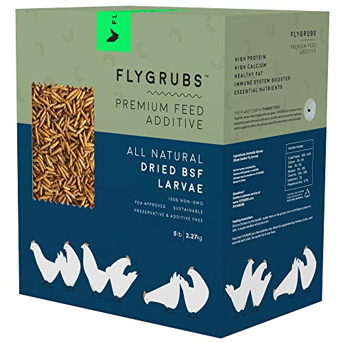 FLYGRUBS Superior to Dried Mealworms for Chickens (5 lbs) - Non-GMO - 85X More Calcium Than Meal Worms - Chicken Feed & Molting Supplement - FDA Approved BSF Larvae Treats for Hens, Ducks, Birds