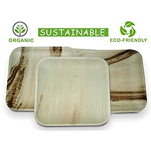SustainMi 25-Piece Disposable Compostable Organic Palm Leaf Plates Set, 9.5-inch