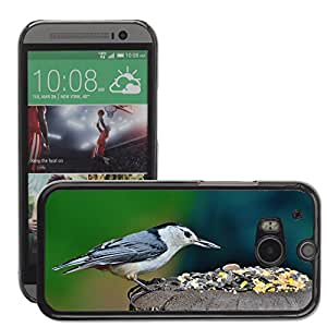 Hot Style Cell Phone PC Hard Case Cover // M00112658 Nuthatch White-Breasted Nuthatch Bird // HTC One M8