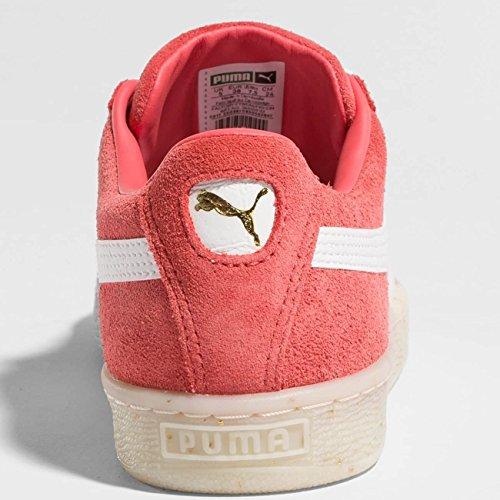 36555902 Basse Puma 36555902 Puma Sneakers Donna Sneakers zgwq8Xxx5