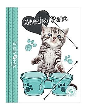 Grupo Erik Editores Premium Studio Pets Cat - Carpeta archivador: Amazon.es: Oficina y papelería