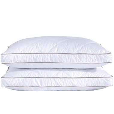 puredown Natural Goose Down Feather Pillows for Sleeping Down Pillow Cotton Pillow Cover Downproof Queen Set of 2