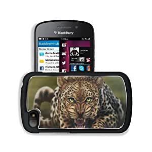 Animals Leopards Big Cats Fangs BlackBerry SQN100 Q10 Snap Cover Premium Aluminium Design Back Plate Case Customized Made to Order Support Ready 4 13/16 inch (123mm) x 2 12/16 inch (70mm) x 8/16 inch (13mm) MSD Q10 Professional Metal Cases Touch Accessori by mcsharks