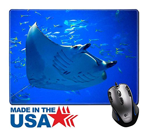 """MSD Natural Rubber Mouse Pad/Mat with Stitched Edges 9.8"""" x 7.9"""" Manta ray 28376487 Customized Desktop Laptop Gaming Mouse - Roma Rays"""