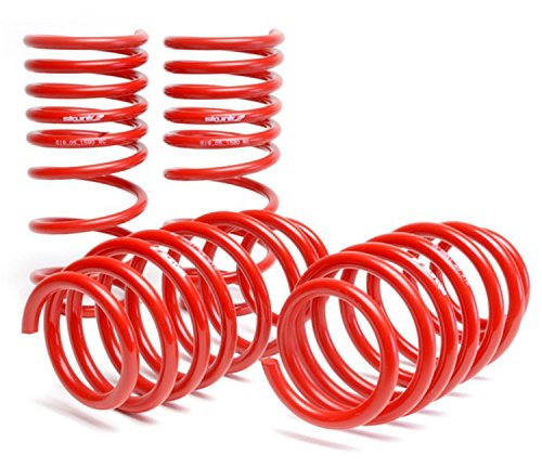 Skunk2 519-05-1580 Lowering Spring for Honda Civic ()