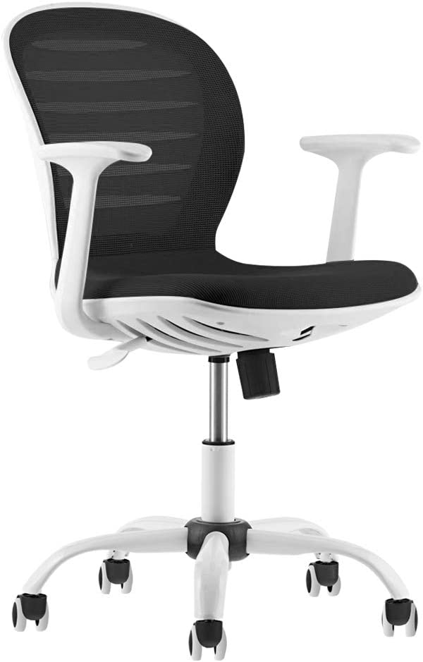 Mid Back Mesh Adjustable Home Office Task Chair with Armrest (Black and White)