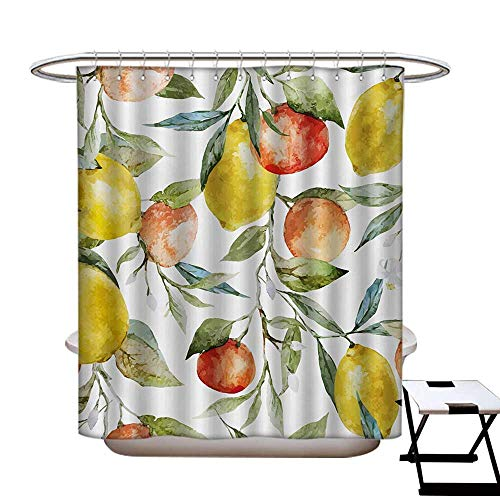 """haommhome Nature Mildew Resistant Shower Curtain Liner Lemon and Orange Clementine Tree Branches Fruit Yummy Winter Season Vitamin Design Shower Curtain with 12 Beaded Rings Multicolor48×72"""""""