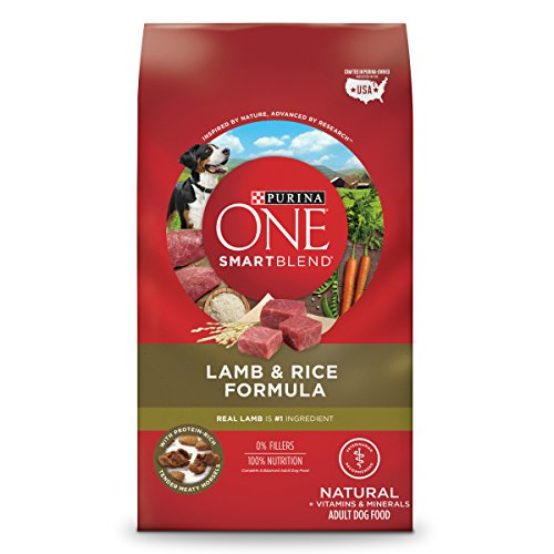 Purina ONE SmartBlend Natural Lamb & Rice Formula Adult Dry Dog Food - 31.1 lb. Bag by Purina ONE
