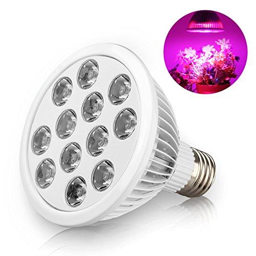 Newest Best Led Grow Lights - 6