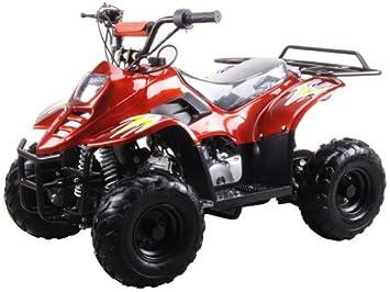 Amazon 110cc four wheelers 6 tires atvs burgundy automotive 110cc four wheelers 6quot tires atvs burgundy fandeluxe Choice Image