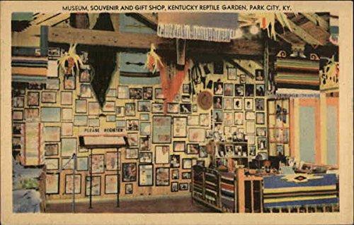 the-kentucky-reptile-garden-park-city-original-vintage-postcard