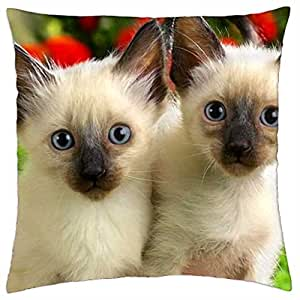 Inseparable - Throw Pillow Cover Case (18