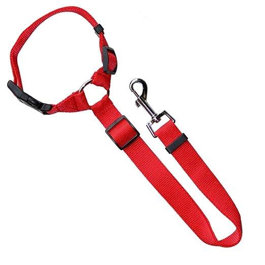 Hihey Universal Perros Cinturón de Seguridad para el automóvil ...