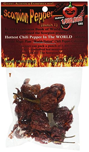 Dried Scorpion Butch-T Chili Pepper Pods, .25 Ounce (0.25 Ounce Pods)
