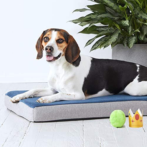 BarkBox Medium Blue 3 Inch Tall Orthopedic Memory Foam Dog Bed or Crate/Kennel Mat - Removable Washable Fleece Cover - Free Surprise