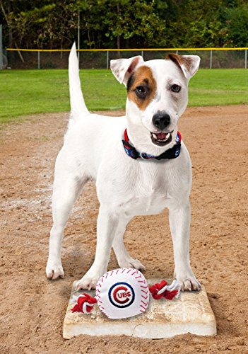 Pets First MLB Chicago Cubs Dog Nylon Baseball Rope Toy by Pets First (Image #1)