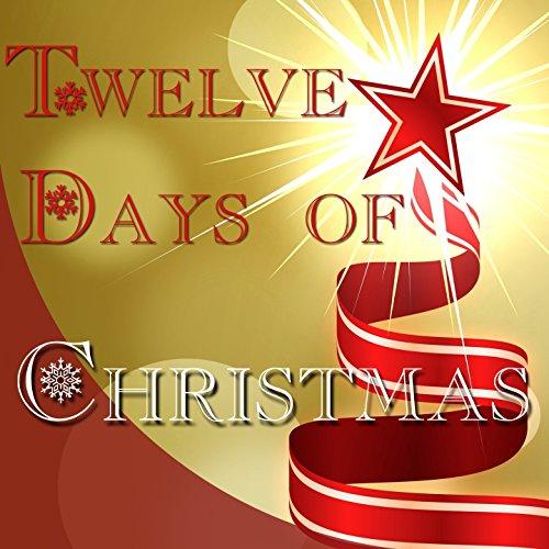 12 Tracks Karaoke (Twelve Days of Christmas (Karaoke))