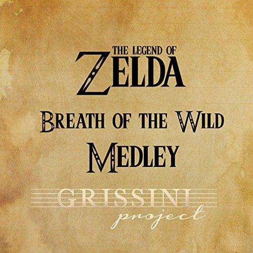 (Medley Zelda Breath of the Wild: Main Theme / On Horse / Rito Village / Hyrule Castle / Beast Ganon)