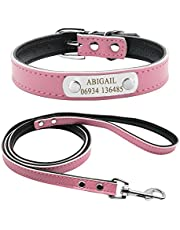 Didog Cute Leather Padded Custom Dog Collar with Engraved Nameplate ID Tag,Fit Cats and Small Medium Dogs