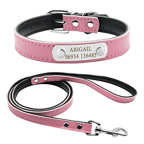 Didog Soft Leather Padded Custom Dog Collar and Leash Set with Personalized Engraved Nameplate,Fit Small Medium Dogs,Pink,M Size ()