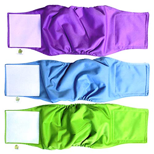 Pet Magasin Male Dog Belly Manner Band Wraps Nappies, 3-Pack, Blue Green and Purple, Small