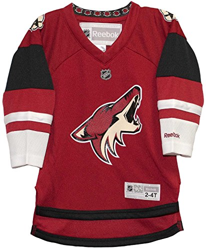Arizona Coyotes Home Toddler Printed NHL Jersey (2T-4T) -