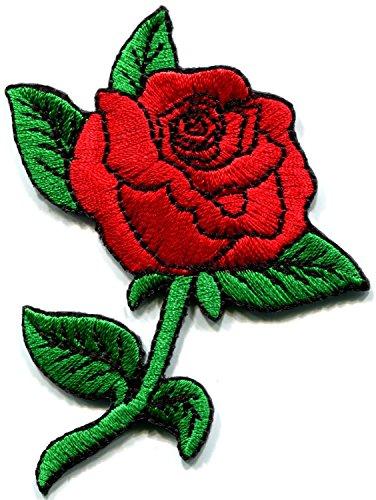 1970s Rose - 8