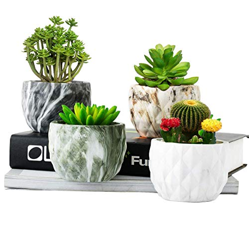 OYSIR Marbling Ceramic Flower Pot,Modern Style Succulent Cactus Bonsai Planter Pots Container,Flower Planter Pot Perfect for Indoor Decor Gift 4 pcs,no Plants
