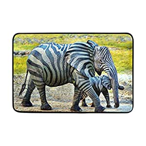 ALAZA Zebra elefantes Felpudo lavable interior/exterior jardín oficina Felpudo, cocina comedor pasillo baño Pet alfombra de entrada con base antideslizante.