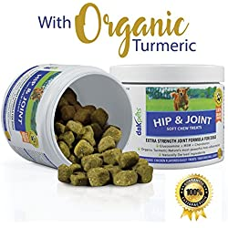 Advanced Hip & Joint Supplements for Dogs, Organic Turmeric, Chondroitin, MSM, Glucosamine for Dogs, Concentrated Extra Strength Naturally Based Formula by DakPets,120 Soft Chews, Made in USA