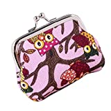 things under 1 - Clearance! FDelinK Women Retro Vintage Small Coin Pockets Hasp Purse Clutch Wallet Bags (Owl-8)