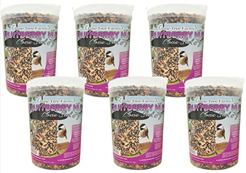6 Pack - Pine Tree Farms 72 Ounce Fruit Berry Nut Classic Seed Log 8006 Made in USA