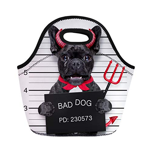 Semtomn Neoprene Lunch Tote Bag Halloween Devil Pug Dog Crying in Mugshot Caught Reusable Cooler Bags Insulated Thermal Picnic Handbag for Travel,School,Outdoors,Work -