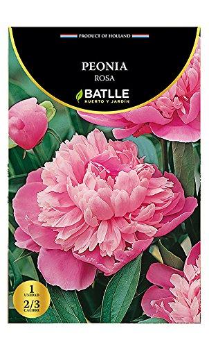 Bulbos - Peonia Rosa - Batlle Semillas Batlle 076803BOLS