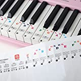 Piano Keyboard Music Note Stickers for white keys, for 49/61/76/88 Key, Transparent and Removable