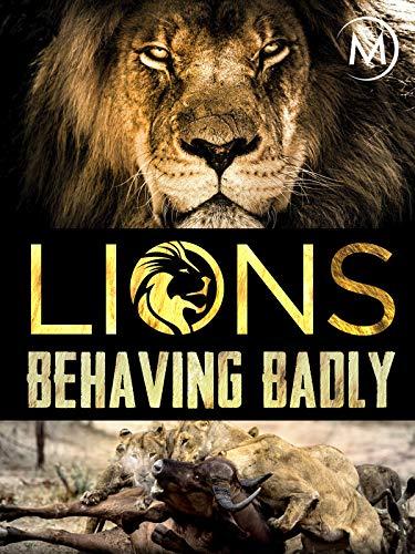 Lions Behaving Badly ()