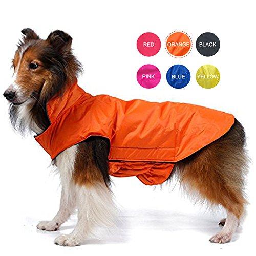 Rain Dog Raincoat - 7