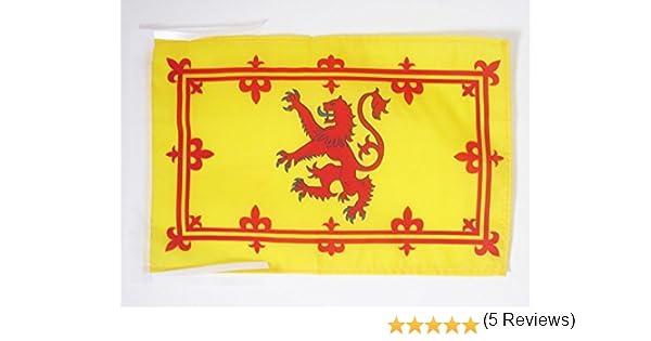 AZ FLAG Bandera Reino DE Escocia 45x30cm - BANDERINA ESTANDARTE Real ESCOCÉS 30 x 45 cm cordeles: Amazon.es: Jardín