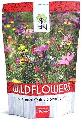 Bulk Wildflower Seeds Annual Quick Blooming Mix - 1/4 Pound Bag - Over 30,000 Open Pollinated Seeds