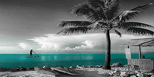 Beach Fun 2 - Gray Background - 3 Decor Colors, Canvas Wrapped, Home Decor Wall Art Floral Flower Pictures, Living Room, Bedroom, Family Room, Kids Room) (Teal, 20x40) by Canvas Wall Art 4 You