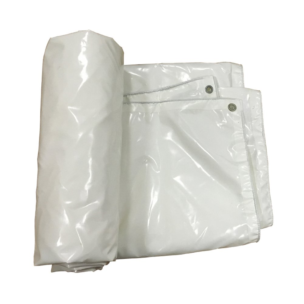 LIANGJUN ターポリン オーニング ポリ塩化ビニル 両面 防水 日焼け止め 肥厚 キャンバス 屋外 車のカバー 550g/m²、 3色、 6サイズ ( 色 : 白 , サイズ さいず : 6X5m ) B07CM6MKFD 6X5m|白