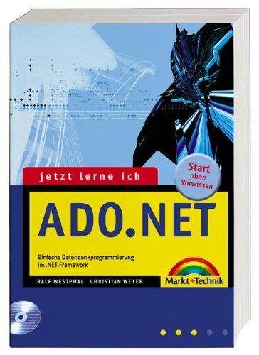 .NET Framework - Developer's Guide Effektiv programmieren mit den .NET-Sprachen (New Technology)